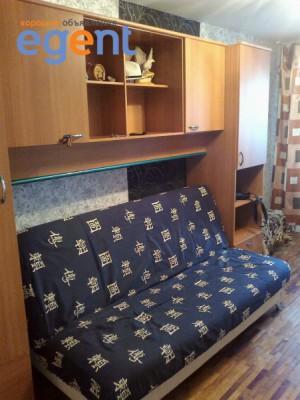 gallery_1383503662.jpg
