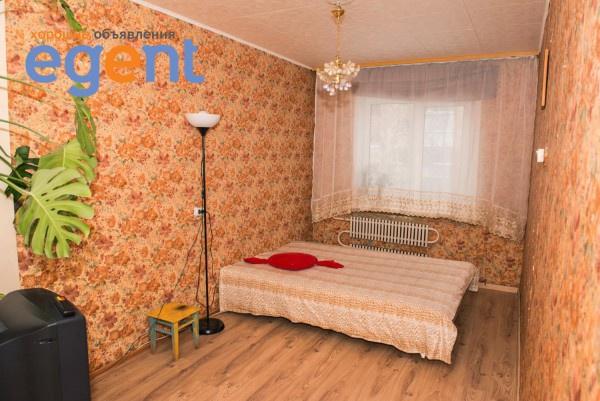 gallery_1413134451.jpg