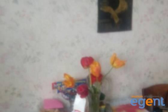 gallery_2FL2vLOz.jpg