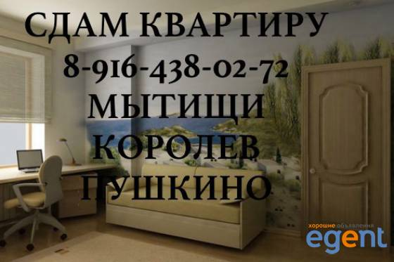 gallery_1bk98DKF.jpg