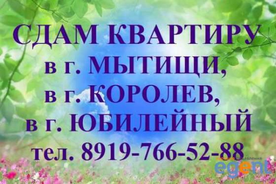 gallery_oy6SiCGb.jpg