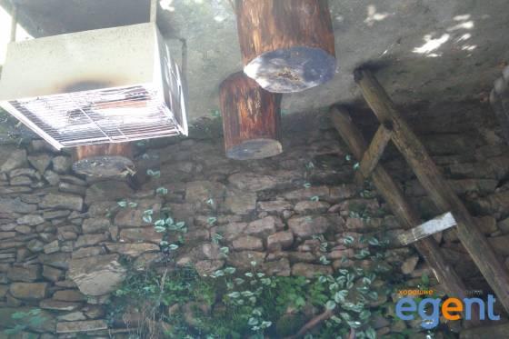 gallery_tnCzRSn7.jpg