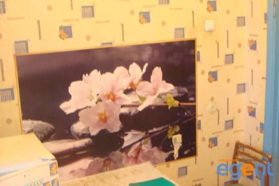 gallery_4W0jZl5b.jpg